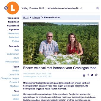 Hennepthee maken in Groningen