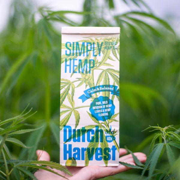 Dutch Harvest pure hennepthee in het hennepveld
