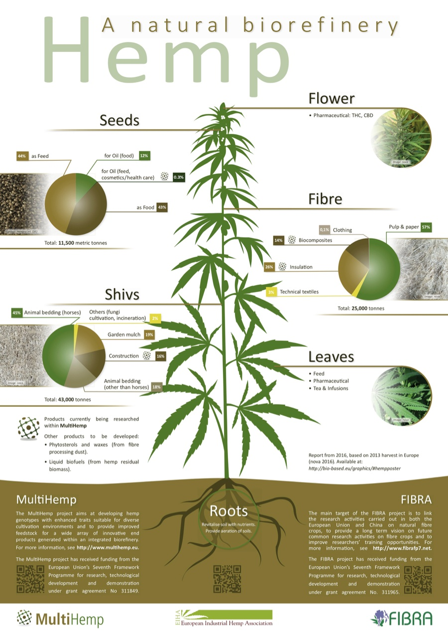 The power of hemp and its many applications