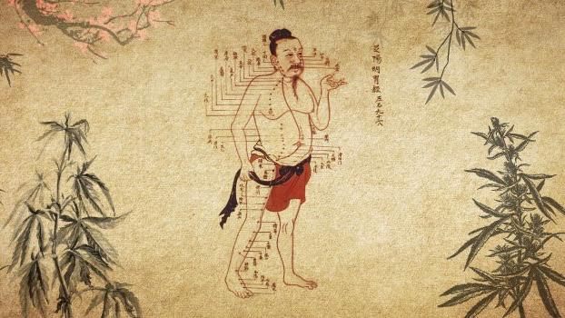 CBD und Hanf in der traditionellen chinesischen Medizin