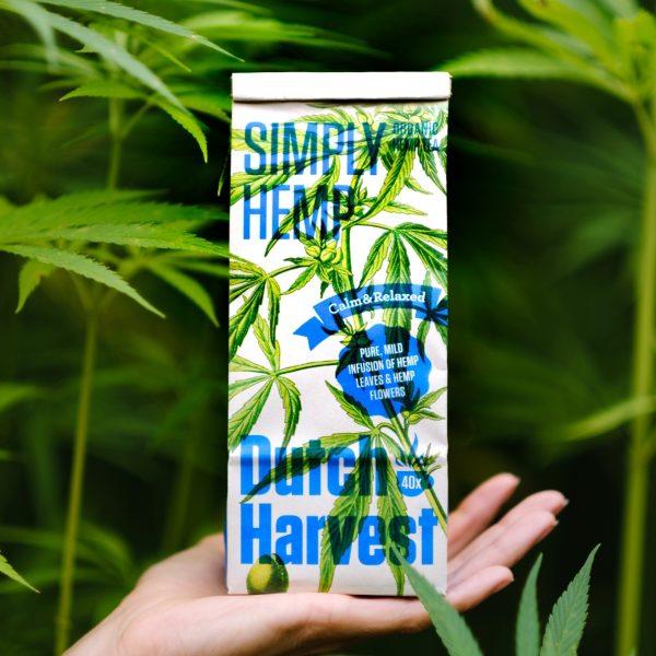 Hennepthee-Dutch-Harvest-pure-hennep-cbd